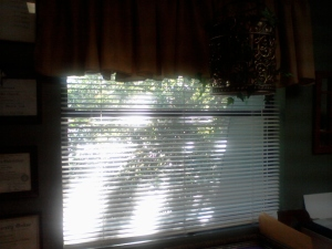 shadows on GW blinds
