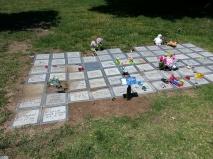 flat stones - cemetery