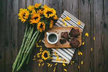 brownies and sunflowers