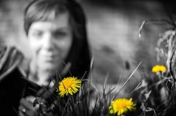 dandelions - woman