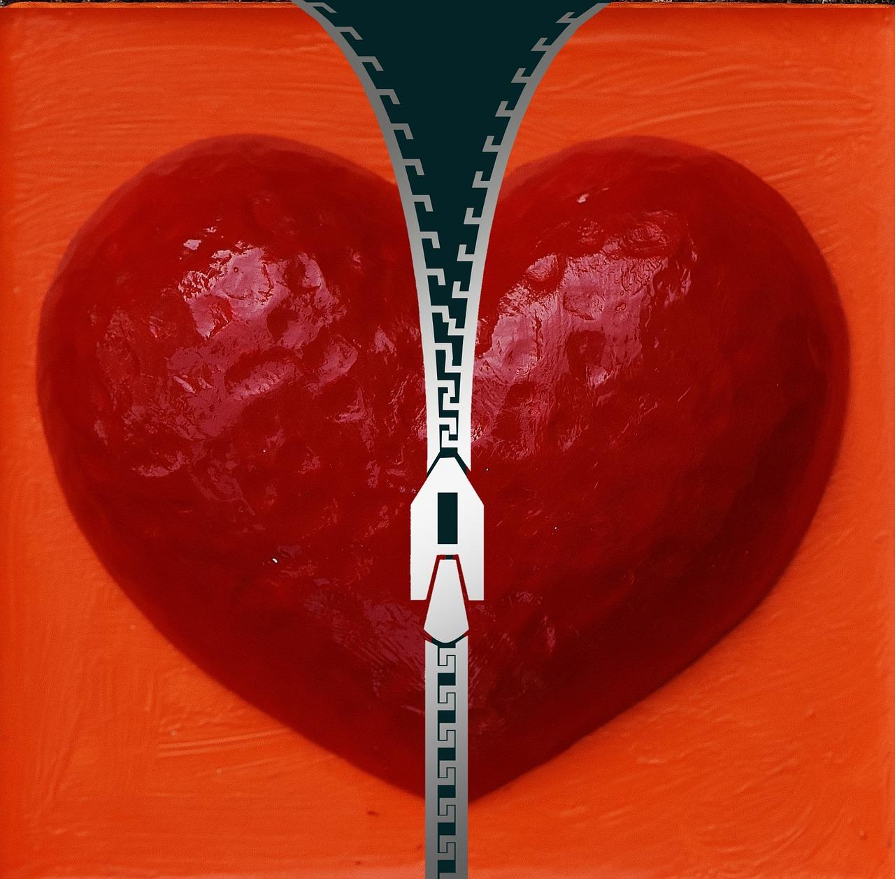 zippered heart