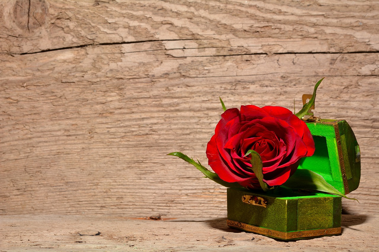 rose in treasure box
