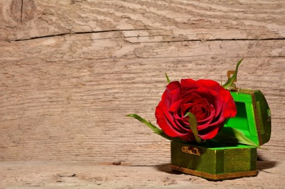 rose in treasure box