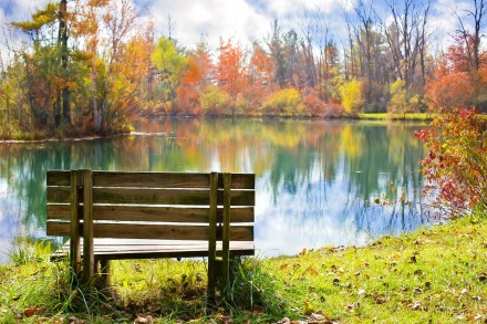 wood bench - lake - autumn